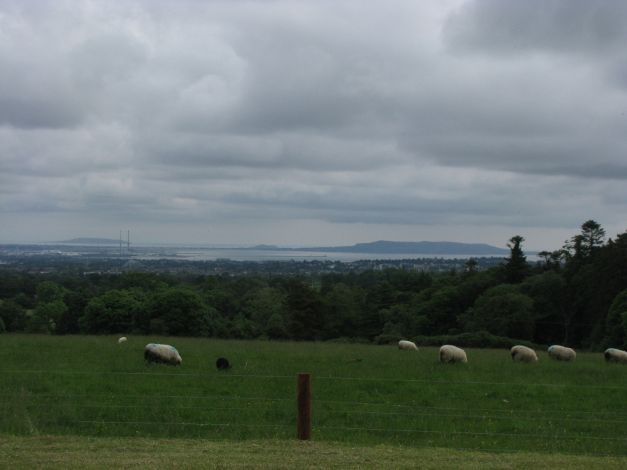 The view from the stone drive at the front of Tibradden, looking down at Dublin and Dublin Bay